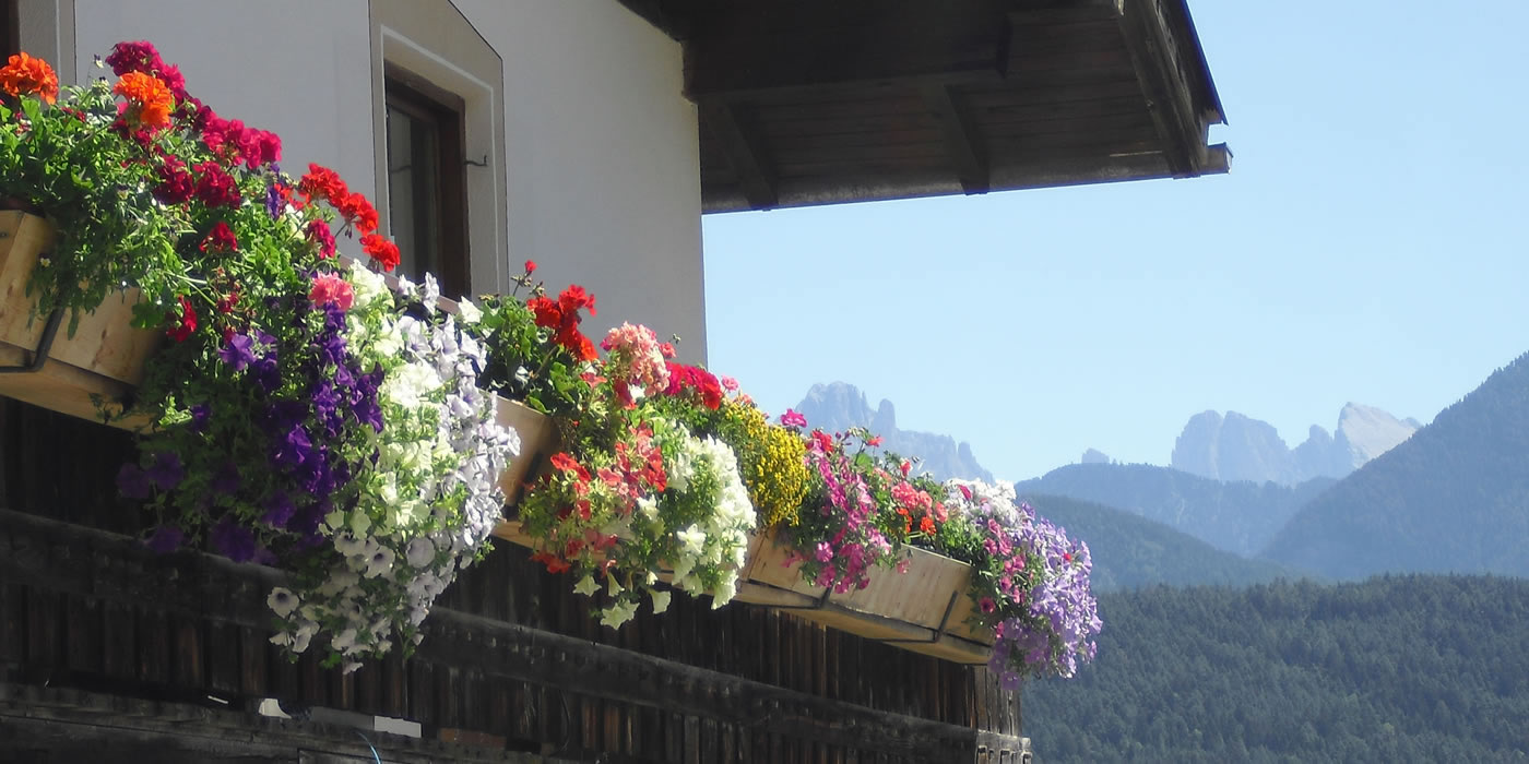 Farm-Holidays in South Tyrol / Dolomites ~ Huber-Hof